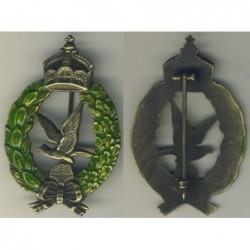 Distintivo di Cannoniere aviazione