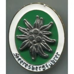 Distintivo Gebirgsjger Bergfhrer