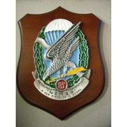 Reggimento Paracadutisti Nembo