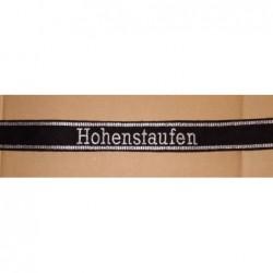 Hohestaufen ufficiali